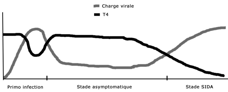 taux charge virale et lymphocytes T4